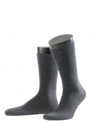 2 Pack Cotton Sock